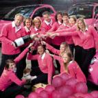 Meetings.nl team